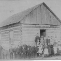 Niebull 1890