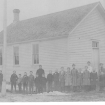 Niebull 1905